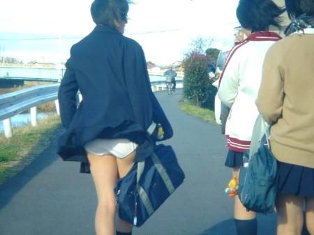 制服からパンチラしてる女子校生 (3)