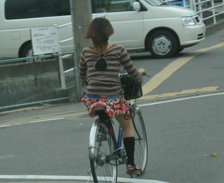自転車パンチラ (8)
