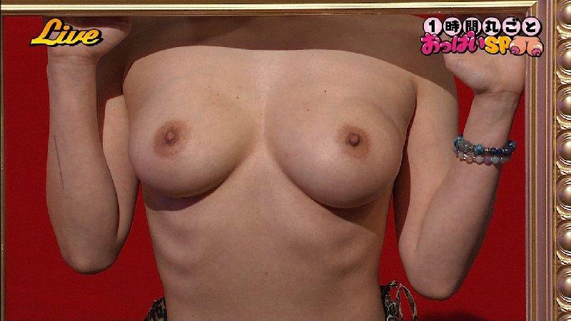 TVで映った乳房がエロい (14)