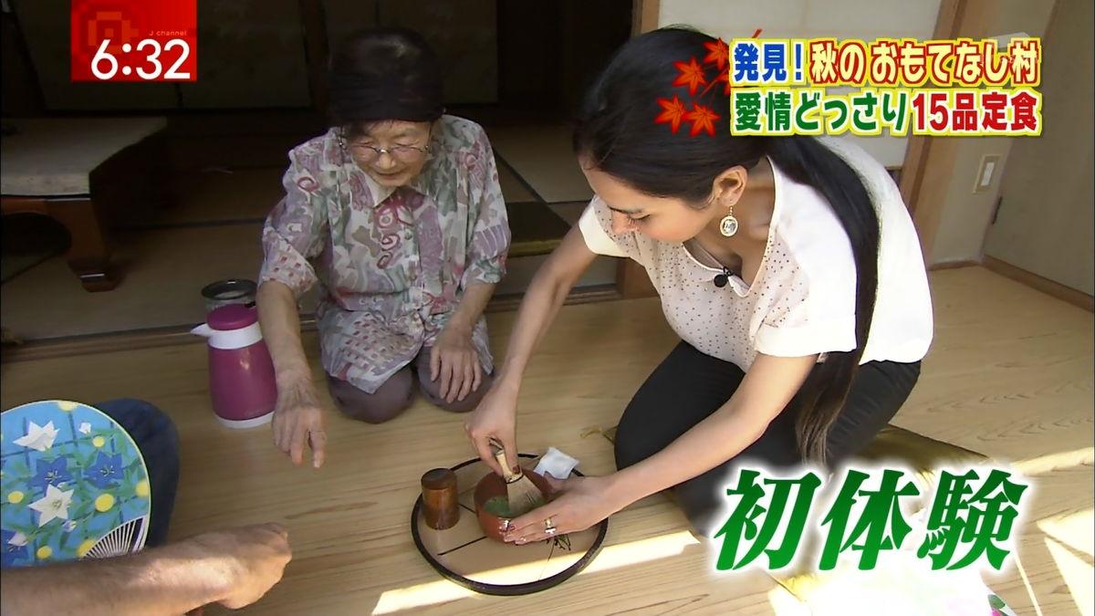 テレビで放送されたエロ場面 (9)