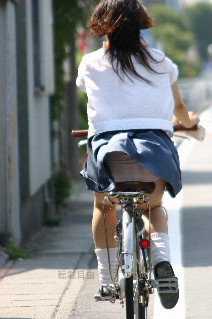 自転車からパンチラしてる女の子 (4)