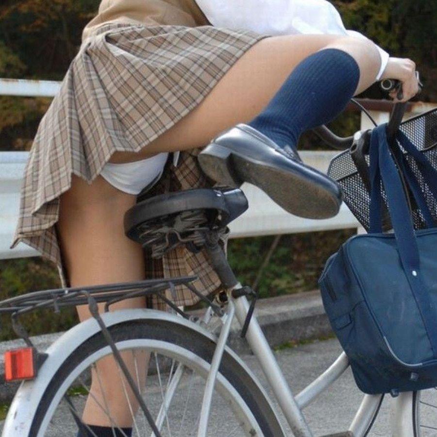 自転車からパンチラしてる女の子 (1)
