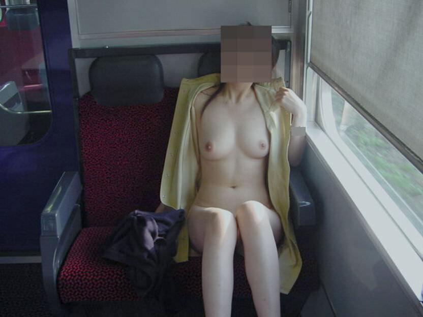 電車の中で全裸になっちゃう変態女性 (9)