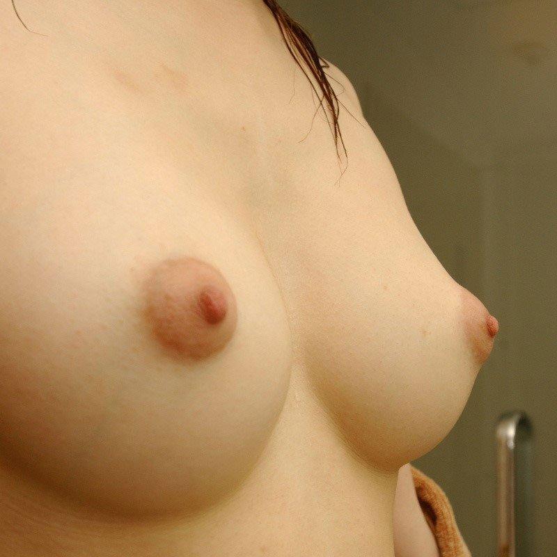 誰でも大好きな美乳 (1)